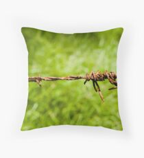 Barbed Wire fence - Mount Warning - Australia Throw Pillow