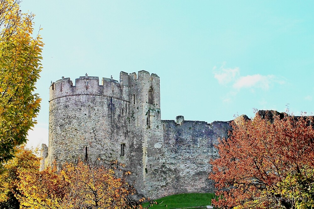 Autumn colours and the castle by missmoneypenny