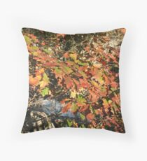 Leaves over the Potomac Throw Pillow