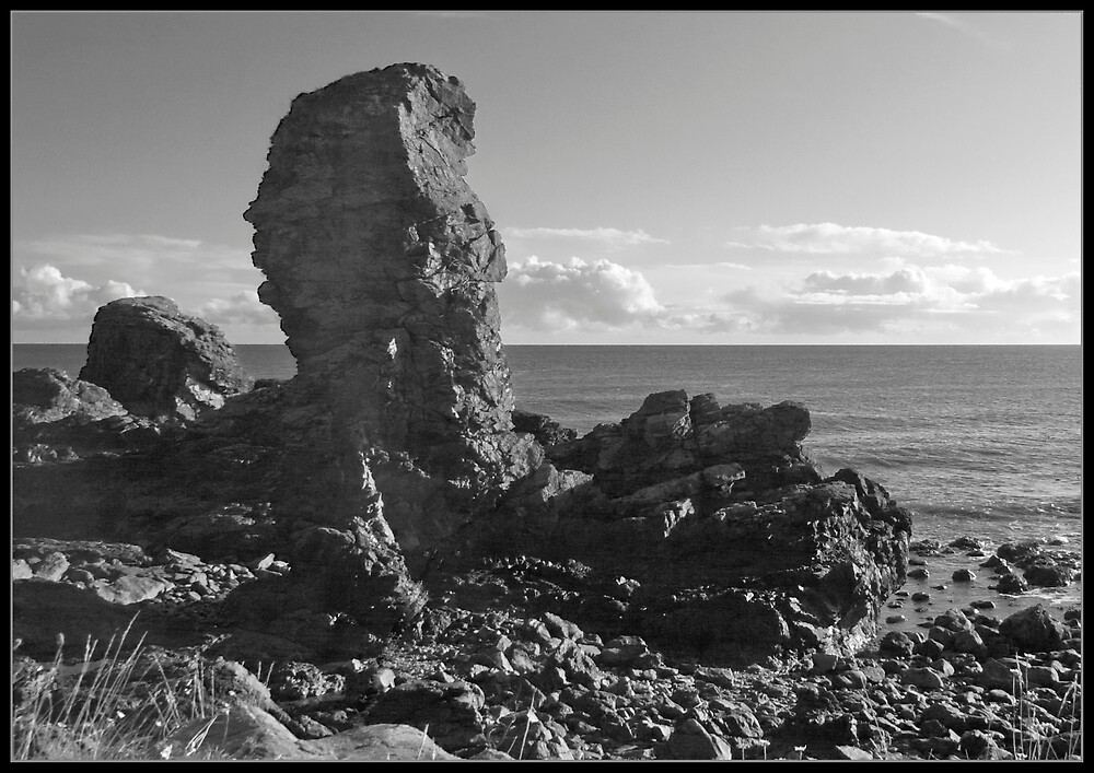The Old Man O' Muchalls by Scott  Andrew