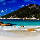 Little Beach Panorama by Sheldon Pettit