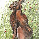 Hare by Ronan Crowley