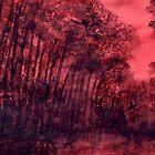 Landscape 1049 by Nurhilal Harsa