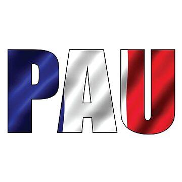 Pau by Obercostyle