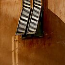 Shutters - Lucca, Italy by rrushton