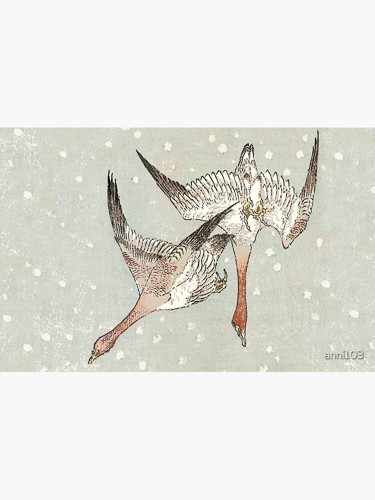 Snow Geese by anni103