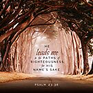 Psalm 23:38 Bible Verse Trees Canopy Path Print by ScripturePics