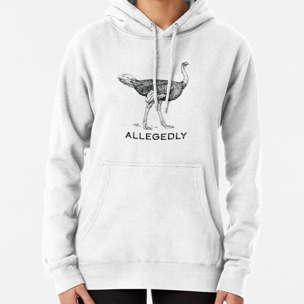 Allegedly Pullover Hoodie