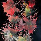 floral fantasy by AnneK