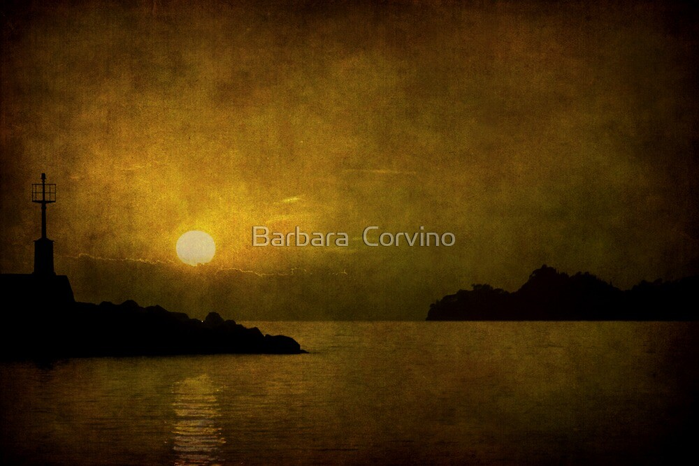 Autumn sunset by Barbara  Corvino