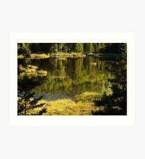 Baxter Pond Art Print