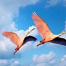Flamingo Couple Flying in Sunny Sky by YLArt