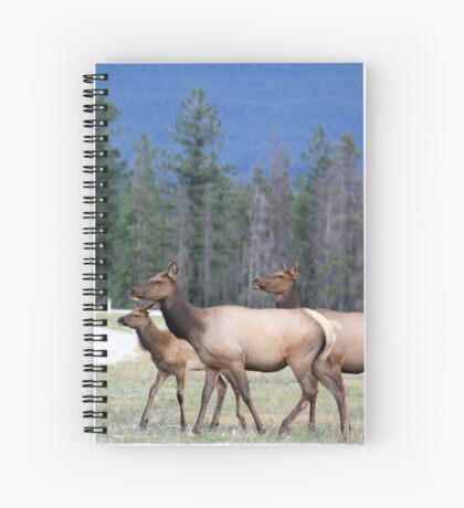 Out for a Stroll Spiral Notebook