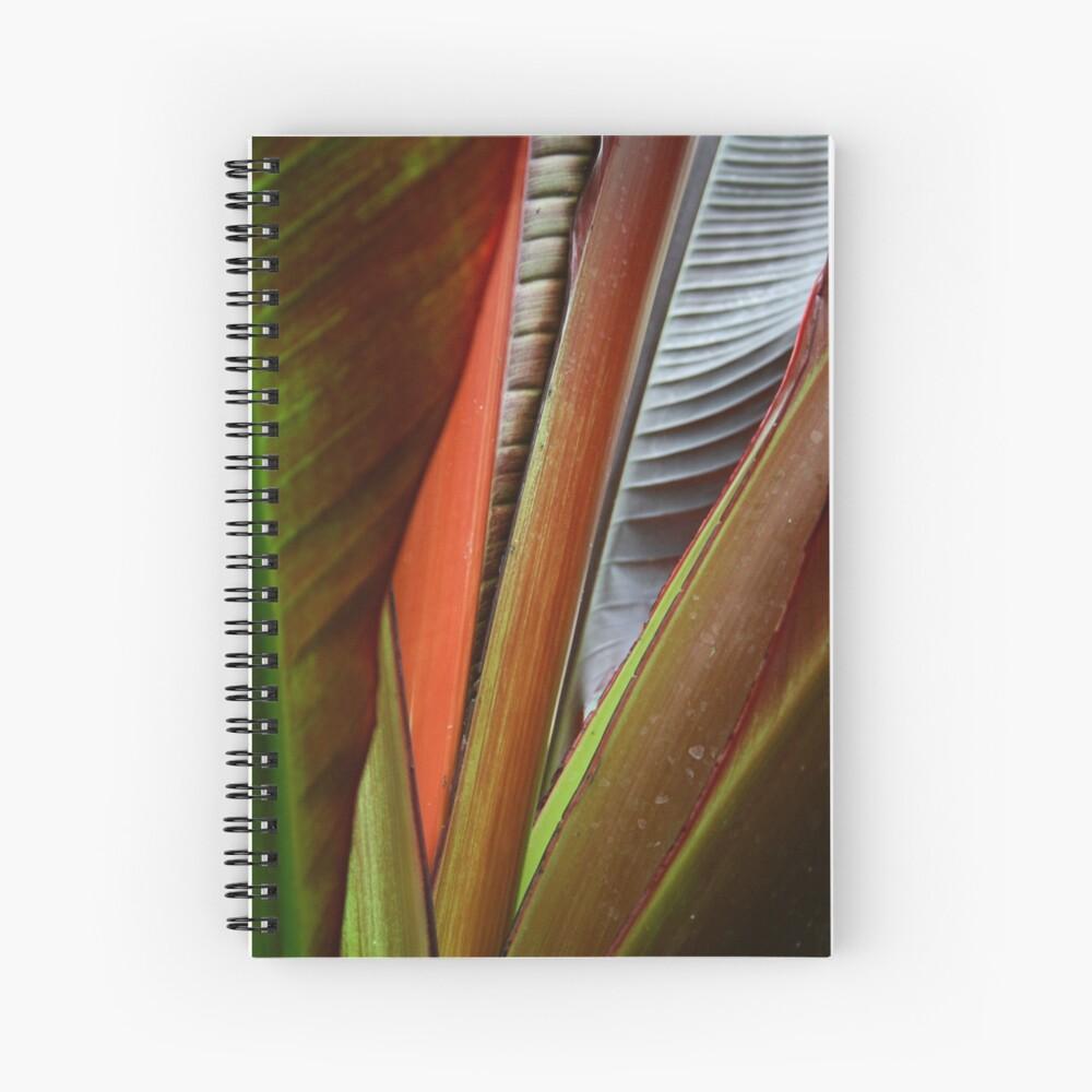 Banana Tree Detail Spiral Notebook