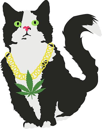 «Gato stoner» de Plantlifegirl