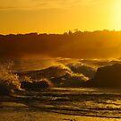 Sun is Everywhere by Anton Gorlin