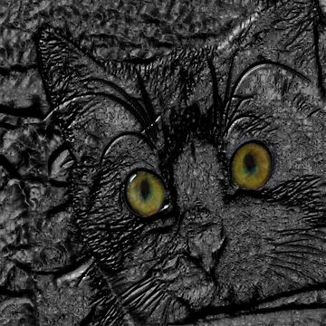 The Metal Cat by LuciaS