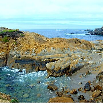 Carmel California Coatline by DianaG