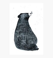 Bear in Love Photographic Print