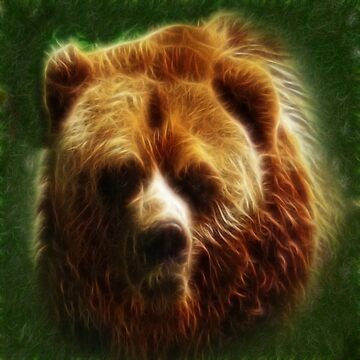 Bear Spirit by LuciaS