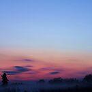 Evening Mist by J J  Everson