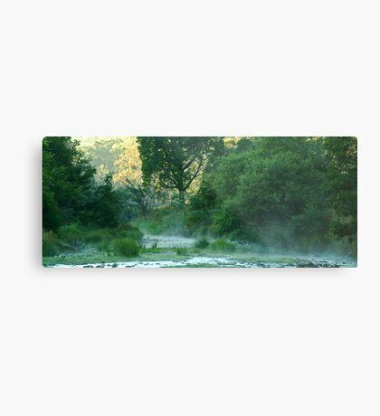 Crooked River,Talbotville Metal Print