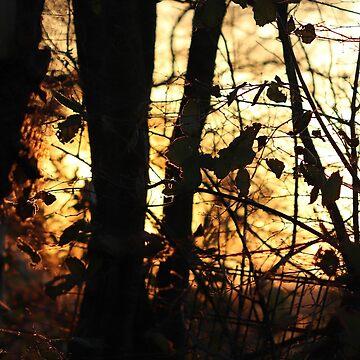 Autumn Scenes II by cuprum