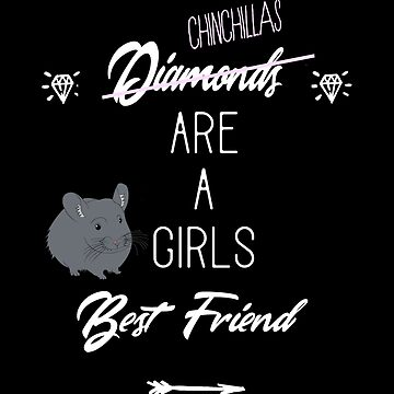 Chinchillas Are A Girls Best Friend by leeseylee
