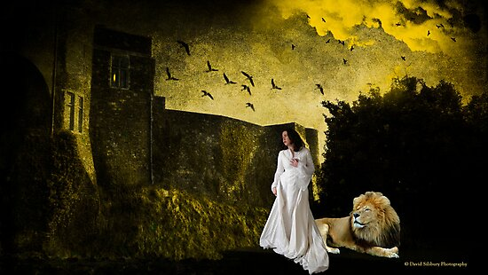 Dover Castle Gate Keeper by David's Photoshop