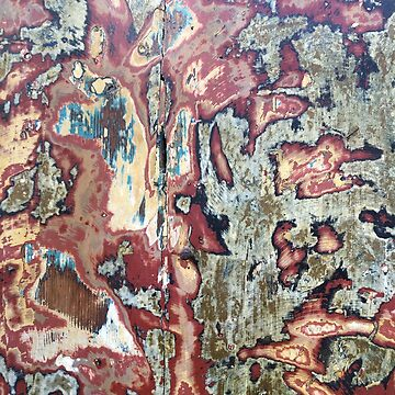PAINT LAYERS ON SANDED DOOR by TOMSREDBUBBLE