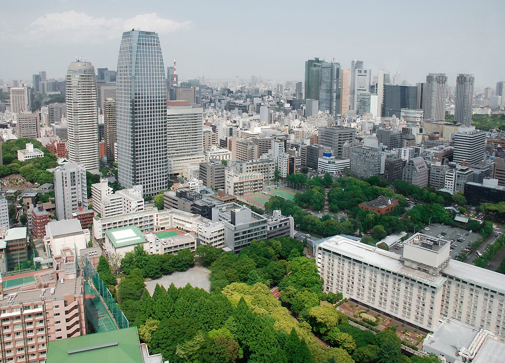 View from Tokyo Tower  by jojobob