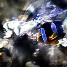 Something Fishy Here by N8istry