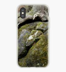 On the Road to Bree iPhone Case