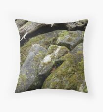 On the Road to Bree Throw Pillow