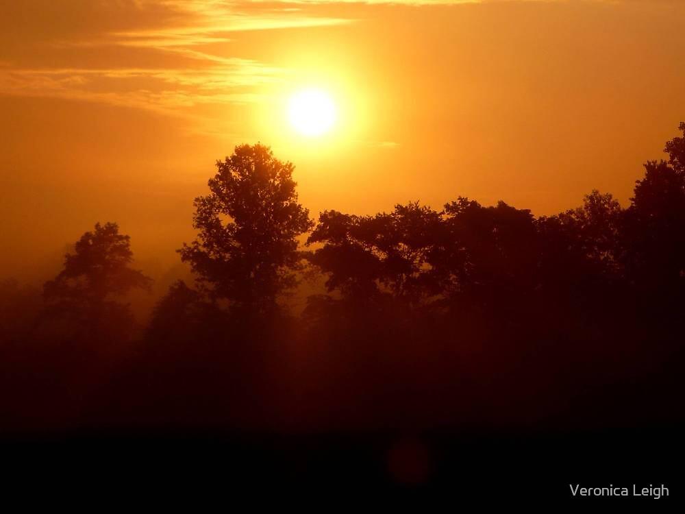 Foggy Sunrise by Veronica Schultz