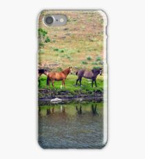 All My Pretty Little Horses iPhone Case/Skin