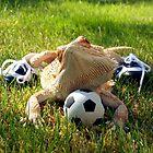 Lizard Sports by Gharial
