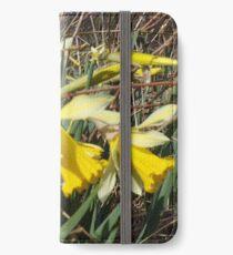 Field Of Daffies iPhone Wallet/Case/Skin