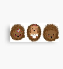 Cute Whimsical Hedgehog Pictures Canvas Print