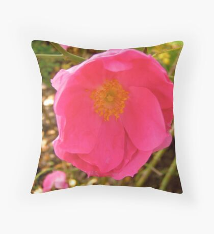 Governor General's rose 14 Throw Pillow