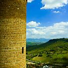 Valley Below- Orvieto, Italy by rjhphoto