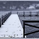 First Snow on the Lake  Cooperstown, NY USA by Frank Kapusta