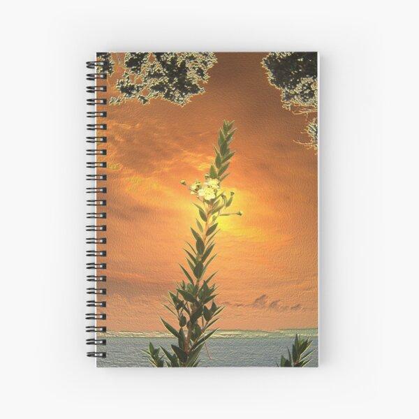 GOLDEN DAWN Spiral Notebook