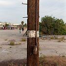 Telephone Pole with White Stripe by joshsteich