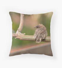 Juvenile Red Wattlebird Throw Pillow