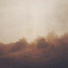Seek Me in the Fog by Katayoonphotos