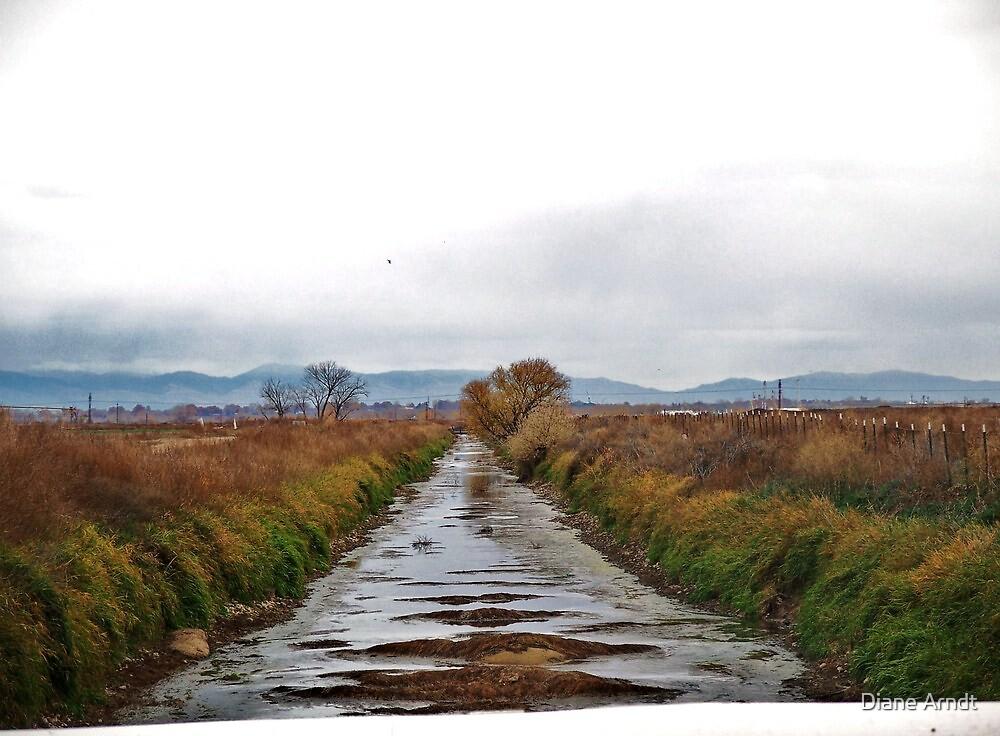 Low Farm Irrigation by Diane Arndt
