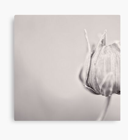 Just a Bulb in the Corner Canvas Print