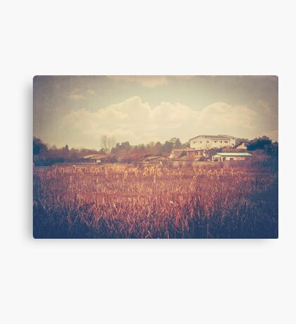 Somewhere in Amol Canvas Print
