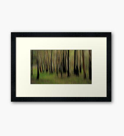 Bush Whispers Framed Print